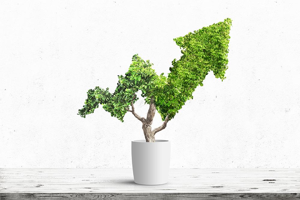 Rast kreditne aktivnosti banaka nastavljen i u…